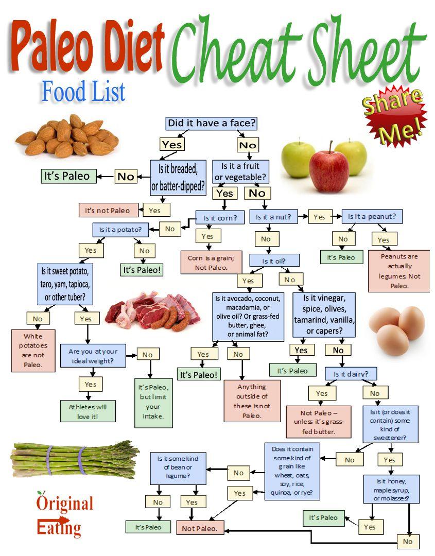 paleo diet for vegetarians pdf