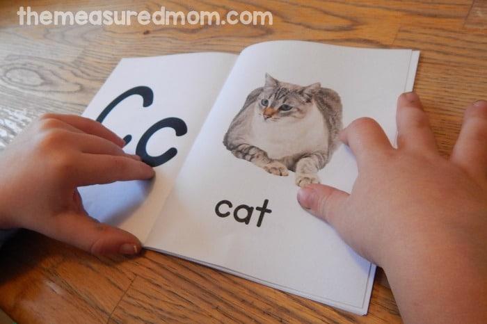picture book pdf