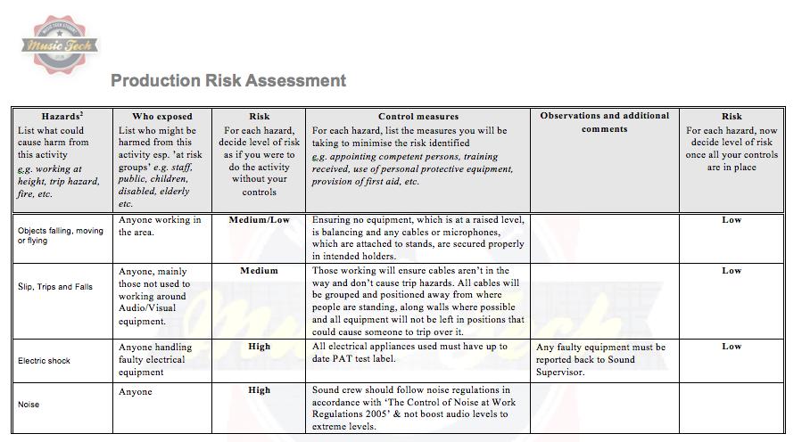 risk management plan concert sample document