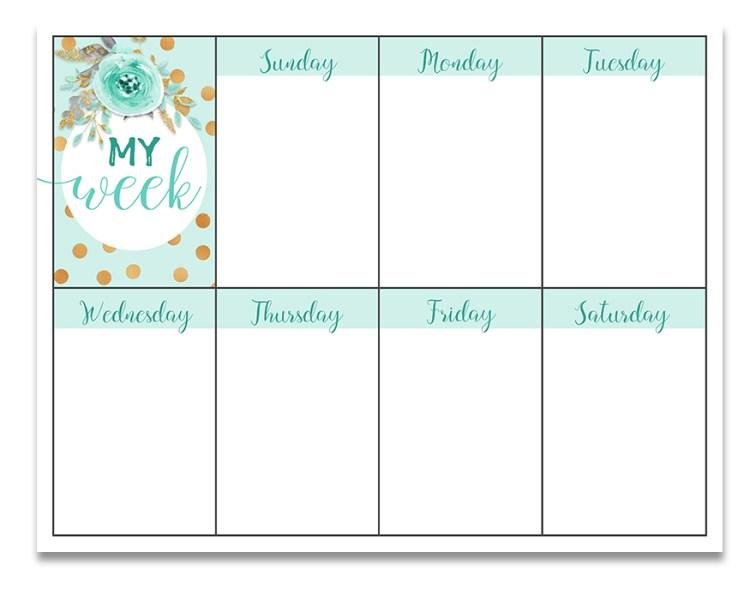 weekly goal sheet pdf